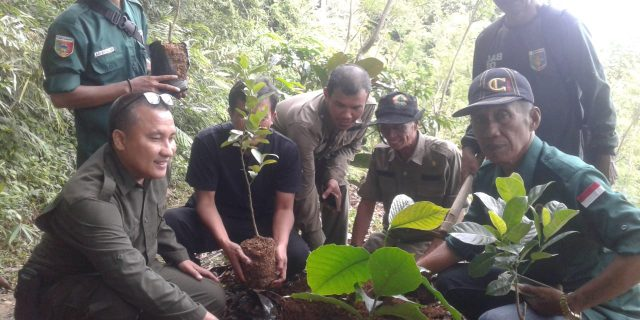 Pemerhati Lingkungan Menggelar Aksi Penanaman Pohon Dihutan Kawasan Register
