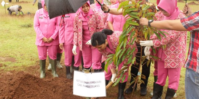 Luarbiasa Polres Pandeglang Peduli Penghijauan Tanam Ribuan Pohon
