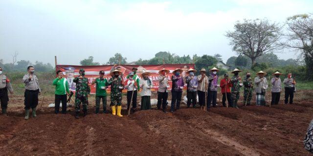 Sukseskan Program Polri, Desa Badak Anom Kecamatan Sindang Jaya Tanam Jagung